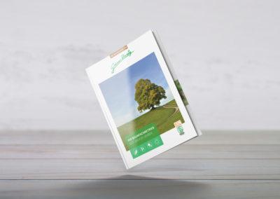 Grüner Zweig Flyer DIN A4